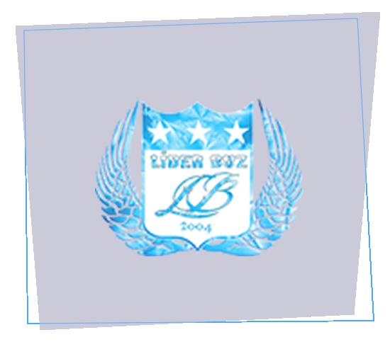lider-buz-banner